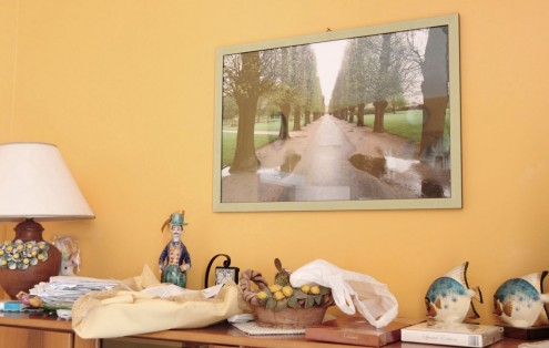 Fotografia con cornice di legno verde (Collezione privata).