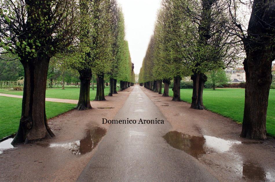 Foto Domenico Aronica-Berlino (8)