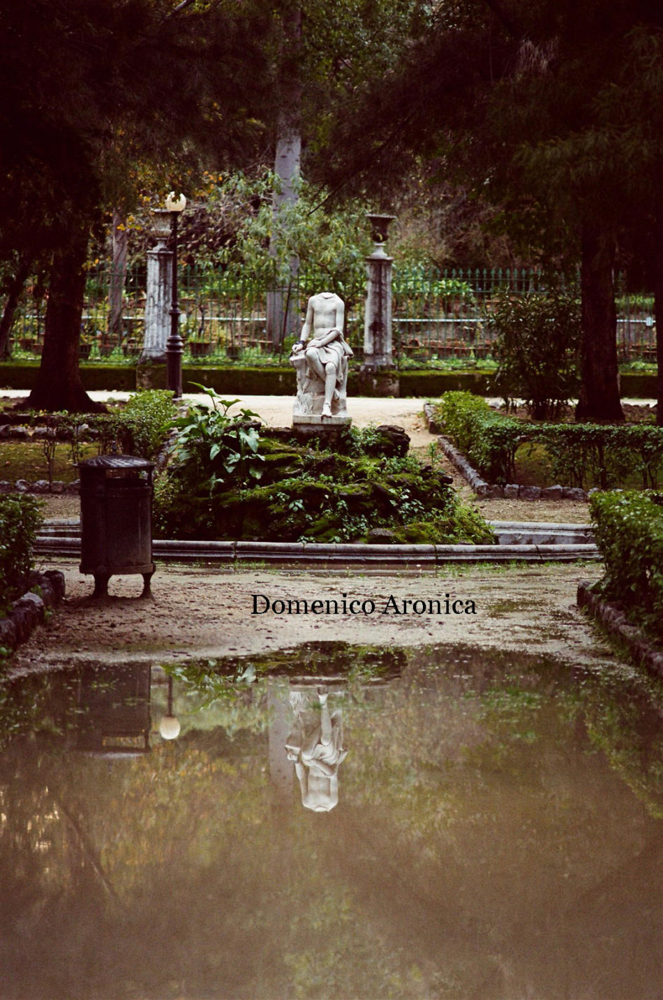 Foto Domenico Aronica-Palermo (12)